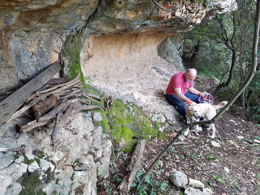 יעקב קורין, ג'ון-ג'ון וערימת העצים בצניר שנחשף