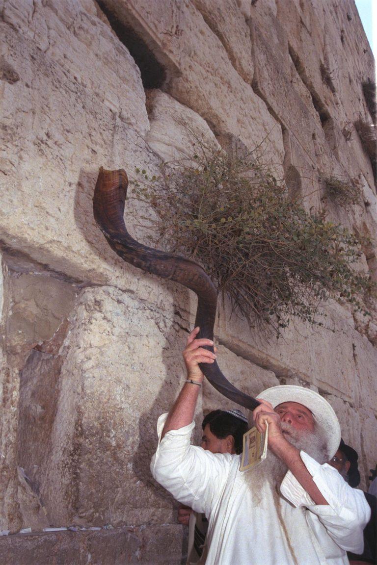 תקיעת שופר בערב ראש השנה, בכותל המערבי בירושלים (אוסף הצילומים הלאומי)
